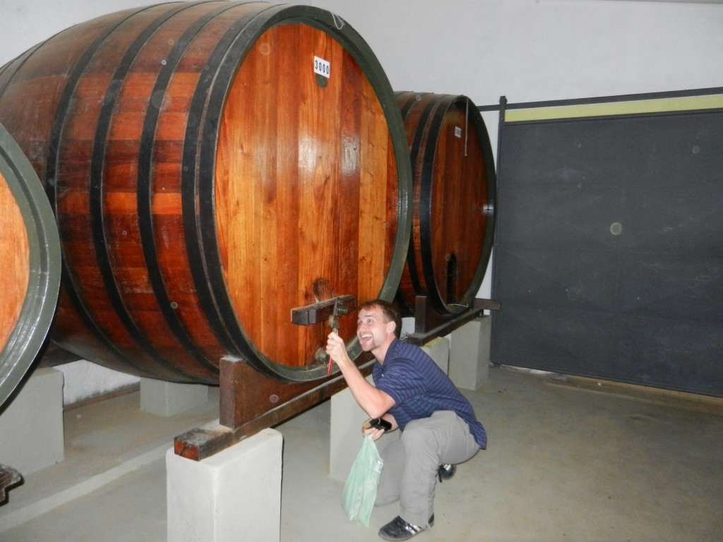 Rich Sportsman Junior drinks from a remarkable big barrel of wine