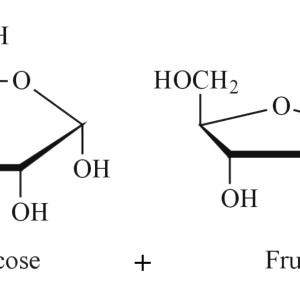 hexose-sugars
